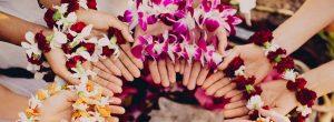 house-of-flowers-gne-curitiba-2018-