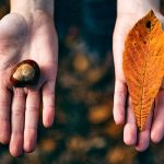 guia-da-alma-dualidade-espiritual-material-equilibrio-conexao-gratidao
