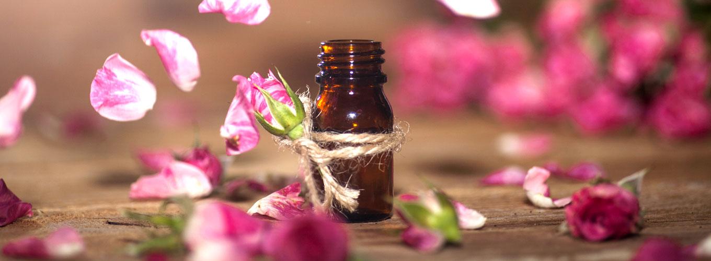 guia-da-alma-aromaterapia-angela-hoppen-alecrim
