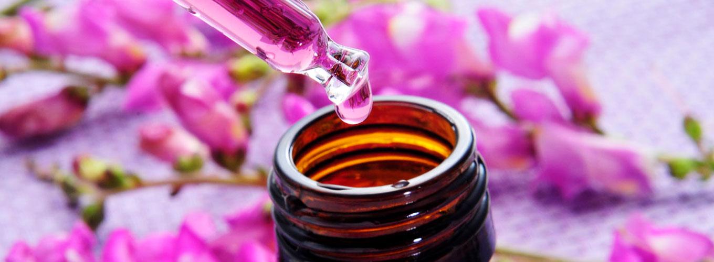 guia-da-alma-ansiedade-depressao-insonia-florais-de-bach-melhor-para-voce-terapia-floral-online