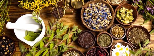 guia-da-alma-fitoenergética-cosmos-ansiedade-paz-equilibrio-chas-plantas-fitoterapia