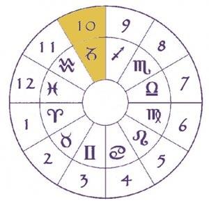 astrologia - sol em capricórnio - casa 10