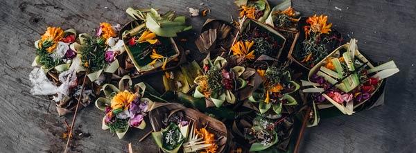 flores e ervas frescas para criar incenso natural caseiro
