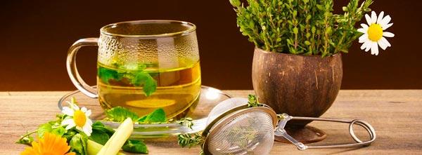 chás e ervas de fitoterapia