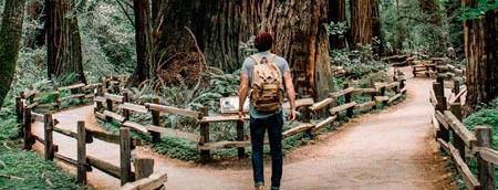 Benefícios do Thetahealing: conversa com guias espirituais