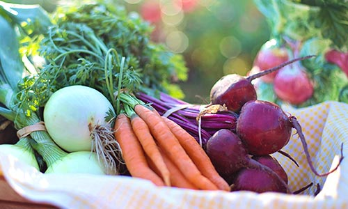 vida sustentável - alimentação saudável