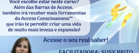 Curso Barras de Access Araruama