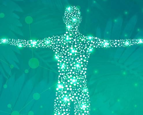 dicas de como aumentar a imunidade - corpo fala!