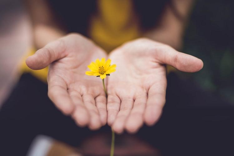 Como perdoar? 9 práticas e reflexões de Perdão! • Guia da Alma