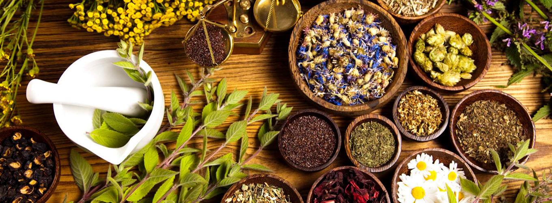 fitoenergética: lista de plantas, ervas e temperos para a saúde