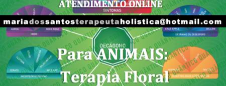 Florais para Animais
