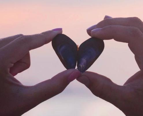 mãos com concha formando coração - conceito de como manter um casamento saudável