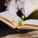 florais para concentração e aprendizado